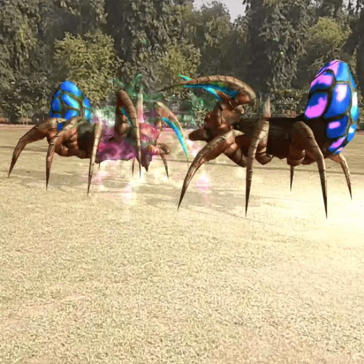 Spider jungle